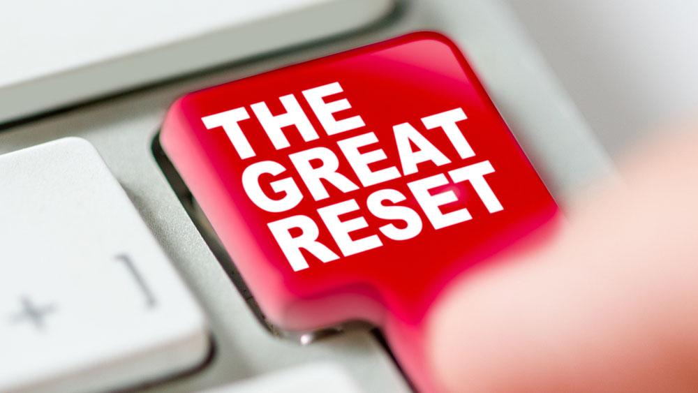 OSORIOartist / Shutterstock.com