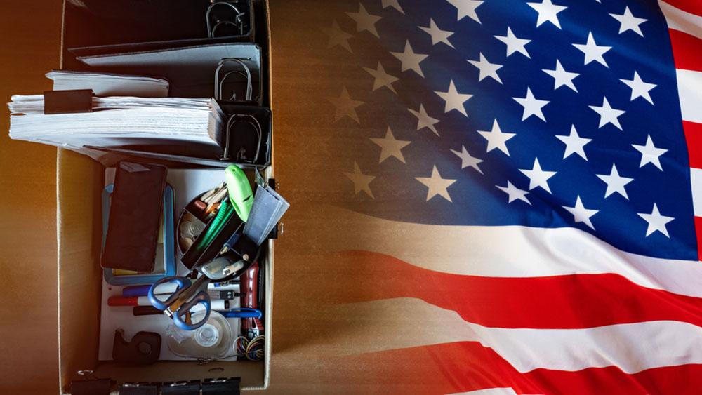 FOTOGRIN / shutterstock.com