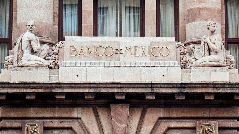 antiago Castillo Chomel / Shutterstock.com